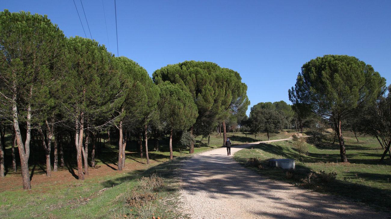 Direcciones a Monte Valdelatas (Madrid) en transporte público