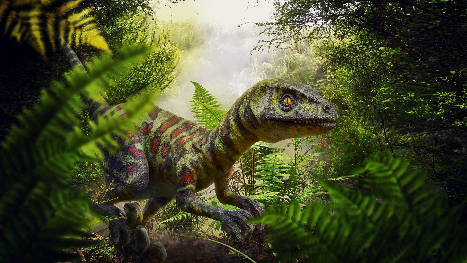 Asi Fue La Extincion De Los Dinosaurios Tras El Impacto De Un Meteorito Hubo más causas tras la extinción de los dinosaurios. telemadrid